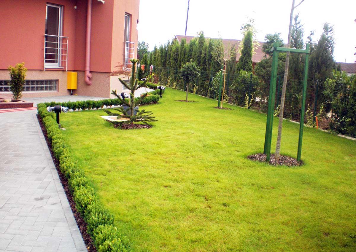 Hortikultura Araucaria uređenje i navodnjavanje vrta u privatnoj kući u Klari